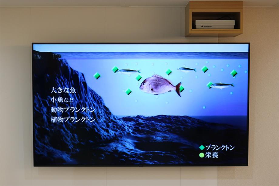 船長帽で記念撮影♪