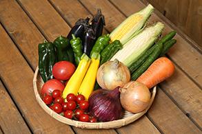 淡路島の食材にこだわったランチも楽しめます!