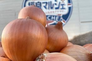 農家さんが直接持ってきてくれる新鮮なお野菜たち!